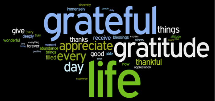 I Am Grateful For You Reading This Post!